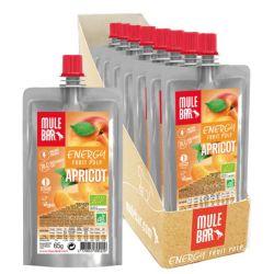 10 PULPES DE FRUITS : Abricot